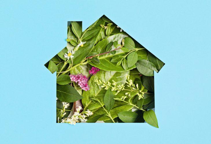 Créer maison écologique